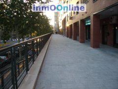 IMGP3902.JPG