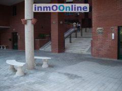 IMGP3904.JPG